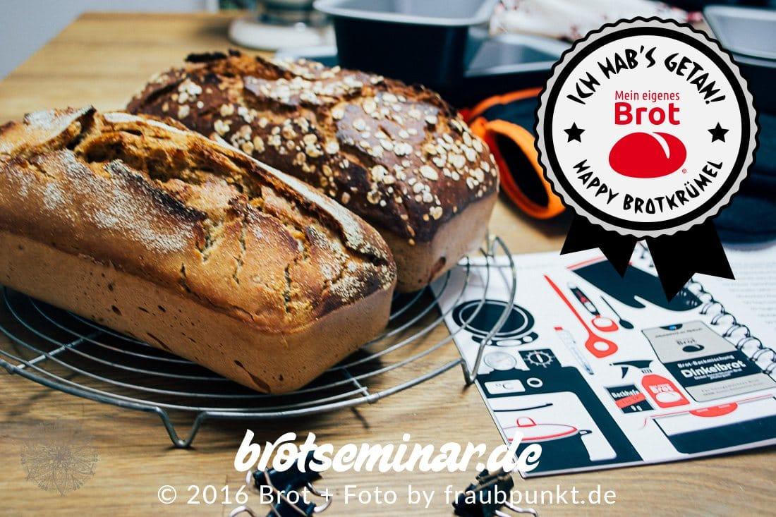 Du brauchst wirklich nur sehr wenig Zeit, Aufwand + Zeug für dein eigenes Brot: 1. Mein brotseminar.de-Buch + 2. Deinen eigenen Brot-Teig + 3. Das Brot-Kastenform-Set. — Das sollte aber wirklich vollständig vorhanden sein. Du willst tolles Brot selber machen? — Das kannst du auch!  In meinem brotseminar.de-Buch steht alles drin, was du für deinen eigenen Brot-Weg wissen musst. Happy Brotkrümel