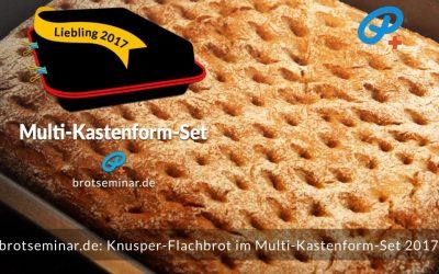 Knusper-Flachbrot mit Ohne-Kneten-Teig im Multi-Kastenform-Set 2017 gebacken