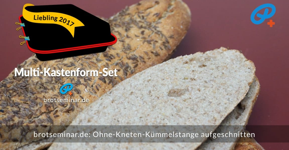 brotseminar.de: Ohne-Kneten-Kümmelstangen im Multi-Kastenform-Set 2017 gebacken + aufgeschnitten.