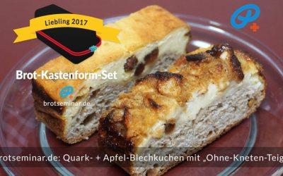 2 (zwei) Blechkuchen gleichzeitig im Brot-Kastenform-Set 2017 gebacken