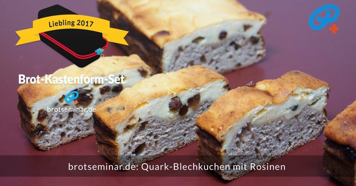 brotseminar.de: Quark-Blechkuchen mit Rosinen; Kuchen-Teig besteht aus je einem Drittel Dinkelmehl 1050 + Dinkelvollkornmehl + Buchweizenmehl; Langzeit-Gär-Methode # 03 (im Kühlschrank) nach der volksbrot2013.de-Methode