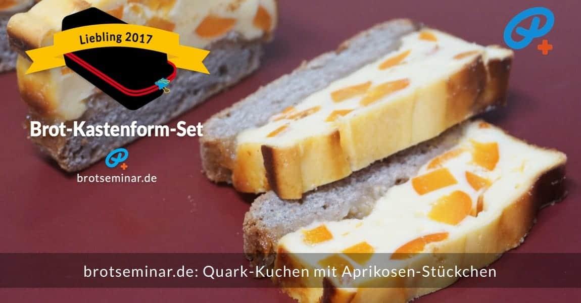 brotseminar.de: Quark-Kuchen mit frischen Aprikosen-Stückchen in Scheiben geschnitten.