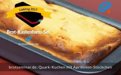 Quark-Kuchen mit Aprikosen-Stückchen + einem glutenfreien Ohne-Kneten-Hefeteig-Boden