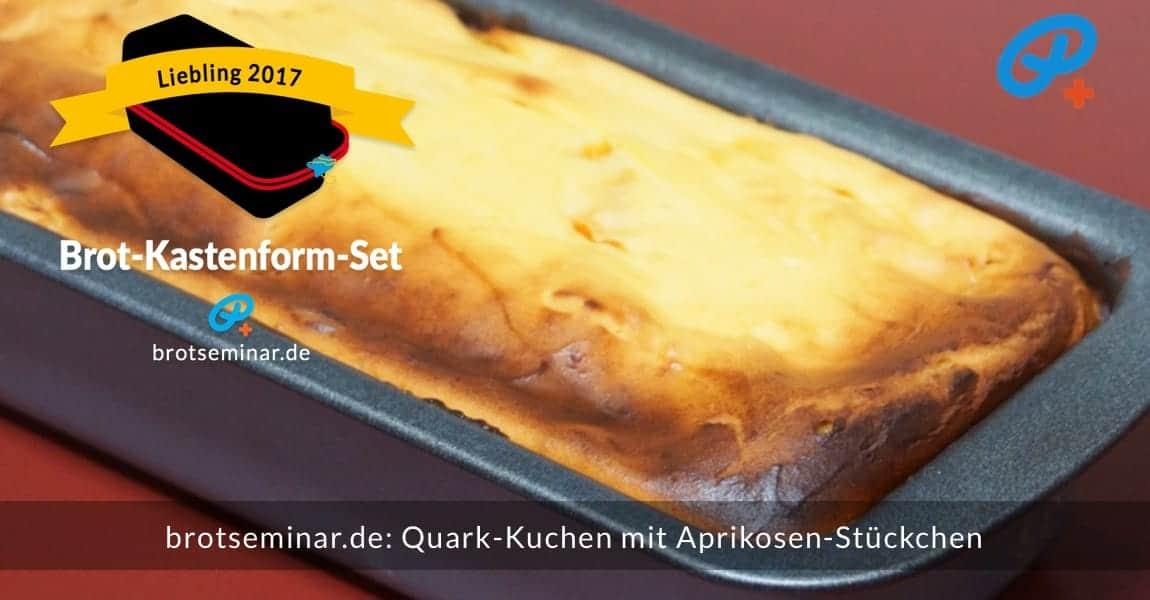 """brotseminar.de: Hausgemachter Quark-Kuchen mit frischen Aprikosen-Stückchen im vielseitigen """"Brot-Kastenform-Set 2017"""" gebacken + noch ofenwarm fotografiert."""