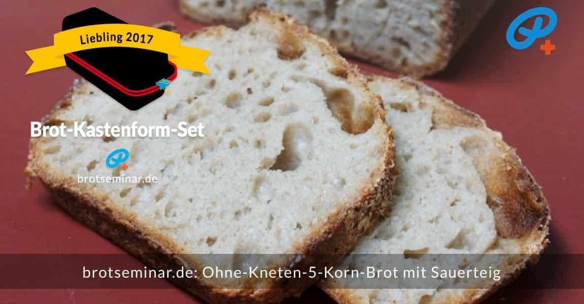 brotseminar.de: Dieses 5-Korn-Brot mit Sauerteig wurde im Brot-Kastenform-Set 2017 brotoptimal gebacken. Mit der brotseminar.de-Methode kannst auch du ein fluffiges Brot — wie dieses — nachbacken.