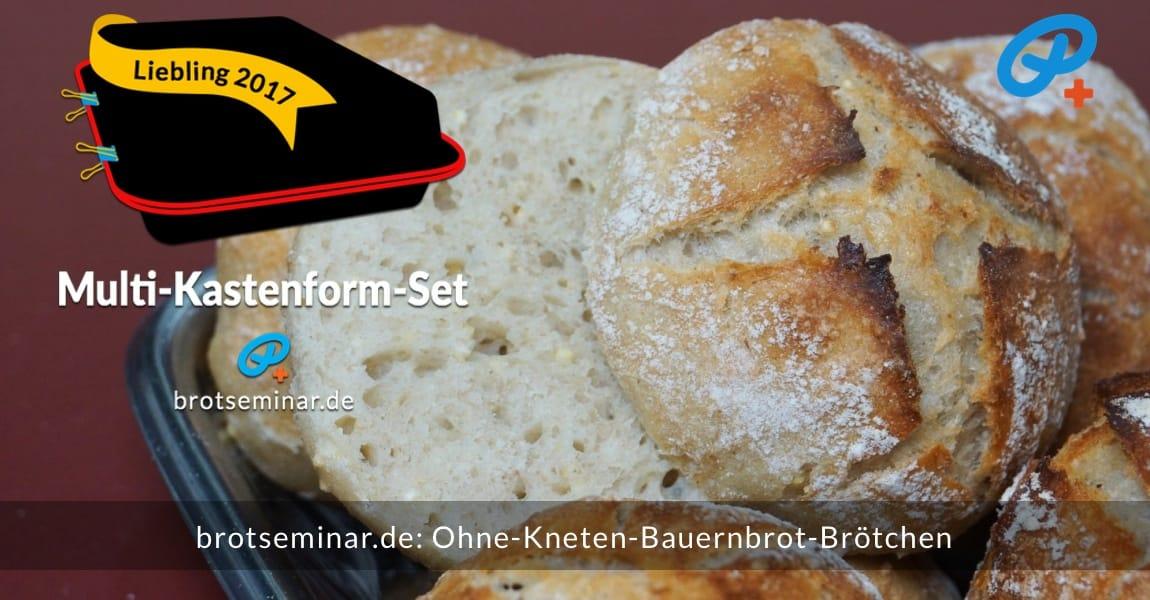 brotseminar.de: Diese Ohne-Kneten-Bauernbrot-Brötchen wurden im Multi-Kastenform-Set 2017 brötchenoptimal gebacken. Leicht ausgekühlt + aufgeschnitten + vernasch-fertig.