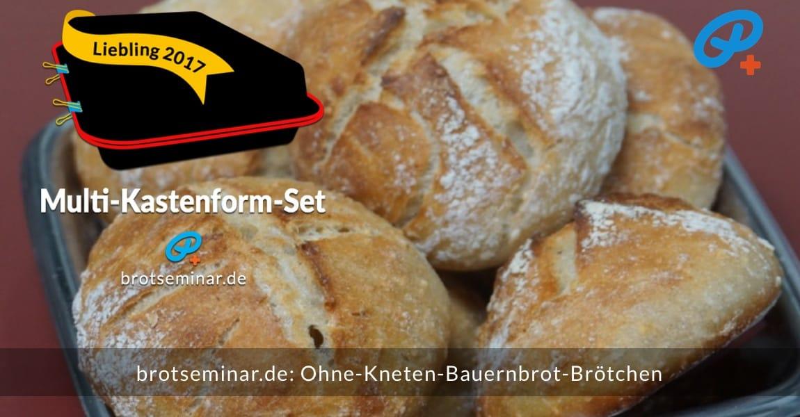 brotseminar.de: Diese Ohne-Kneten-Bauernbrot-Brötchen wurden im Multi-Kastenform-Set 2017 brötchenoptimal gebacken. Leicht ausgekühlt + vernasch-fertig.