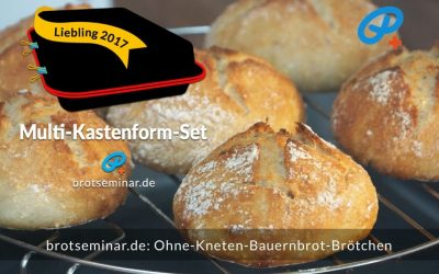Ohne-Kneten-Bauernbrot-Brötchen mit Sauerteig + Hirse