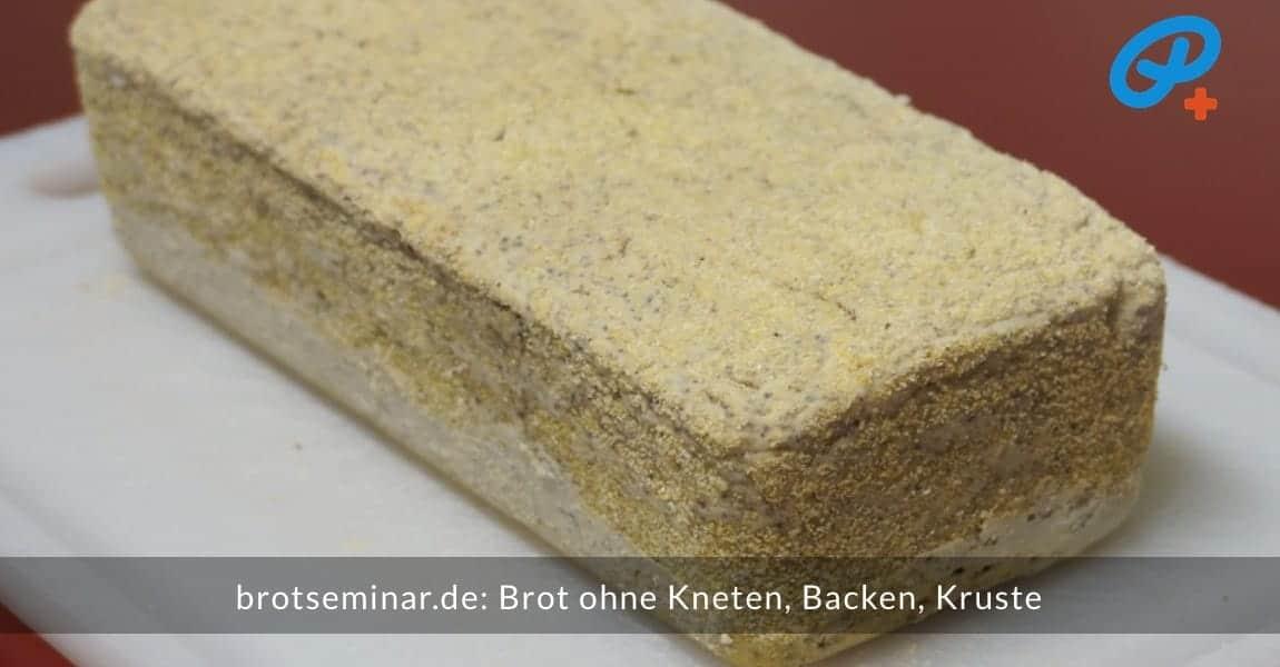 brotseminar.de: Brot ohne Kneten, ohne Backen, ohne Kruste. Fertiges Brot aus dem Brot-Kastenform-Set 2017 entnommen.